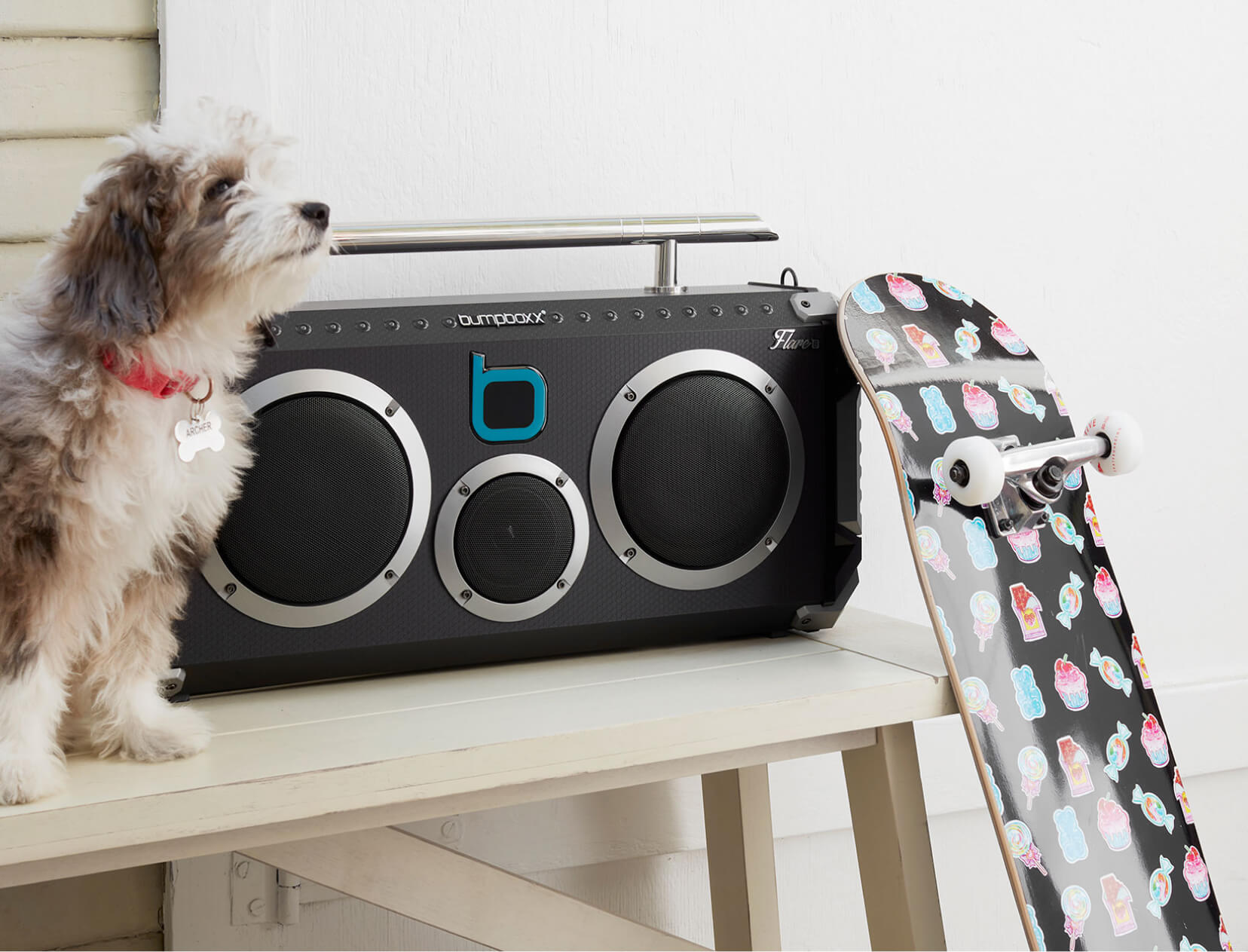 dog and boombox