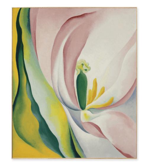 MoMA Framed Georgia O'Keeffe Tulip Print